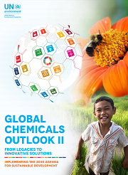 Global Chemicals Outlook II - access to figures in report